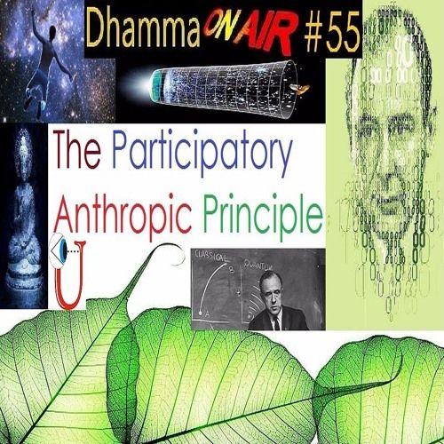 Dhamma on Air #55 audio:   The Participatory Anthropic Principle  https://soundcloud.com/bhikkhu-samahita/dhamma-on-air-55-audio
