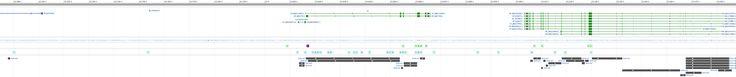 KL klotho [Homo sapiens (human)] - Gene - NCBI