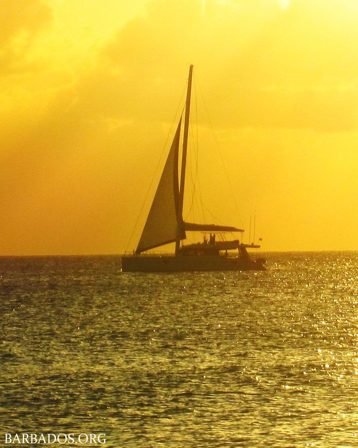 Enjoy a romantic cruise along the coast of Barbados with the one you love, watching the starlit sky on a cloudless night!