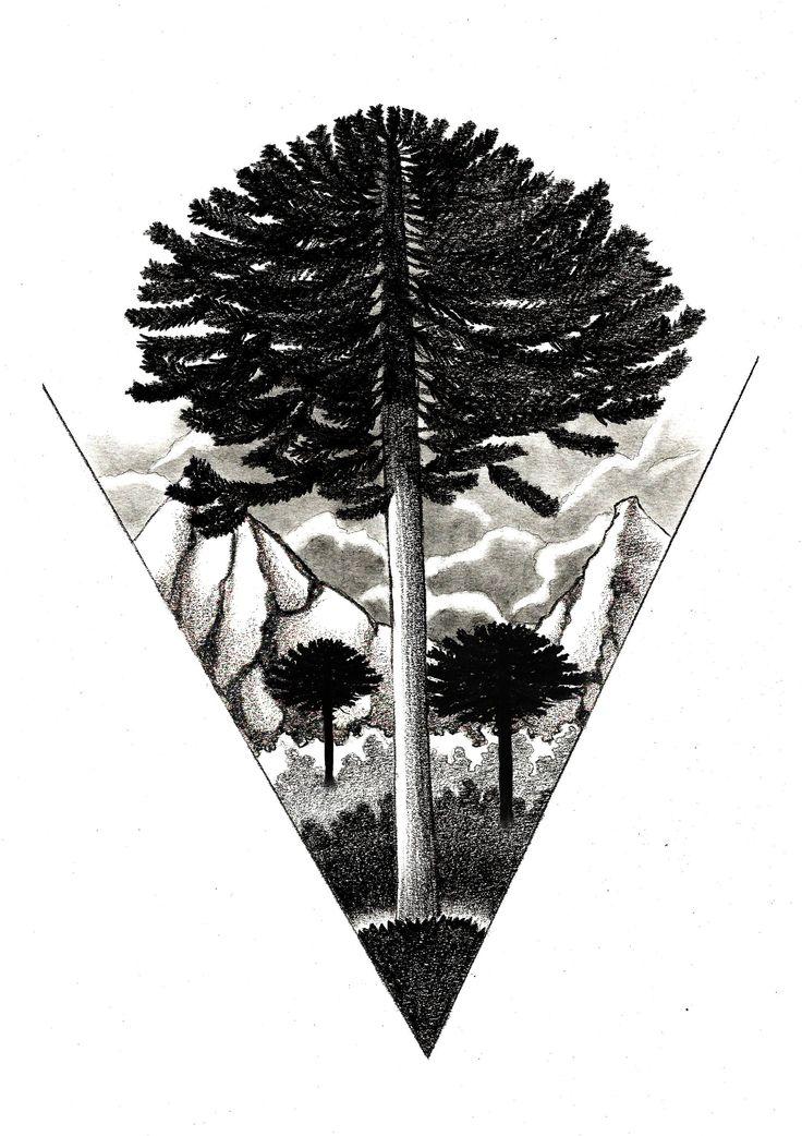 Araucaria Tattoo
