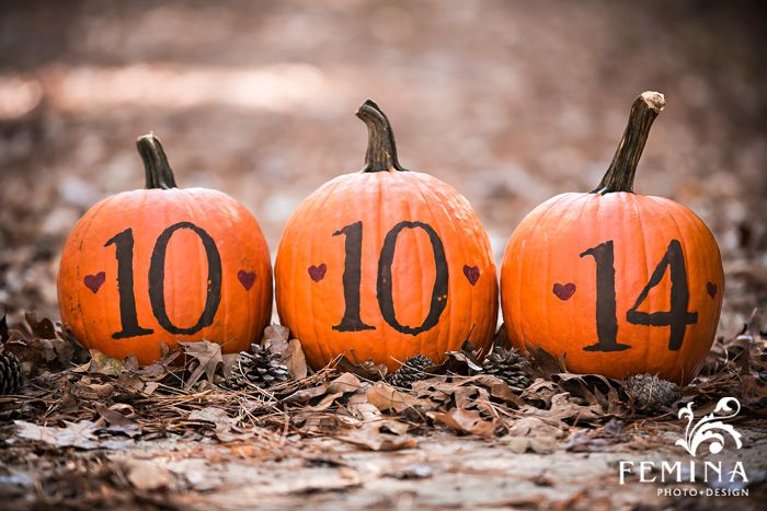Fall Engagement Session, Save the Date Ideas, Pumpkin Save the Dates, South Jersey Engagement Session, Engagement Session Ideas; Photo Courtesy of www.feminaphoto.com