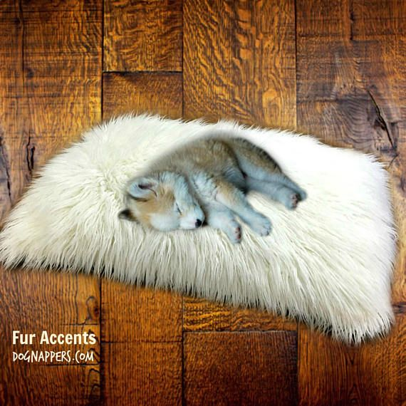 Best Rug Dog Hair: 41 Best Pet Beds Images On Pinterest