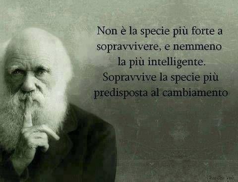 Frase Filosofia