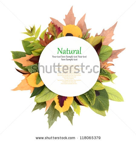 White plate with colorful leaves around it