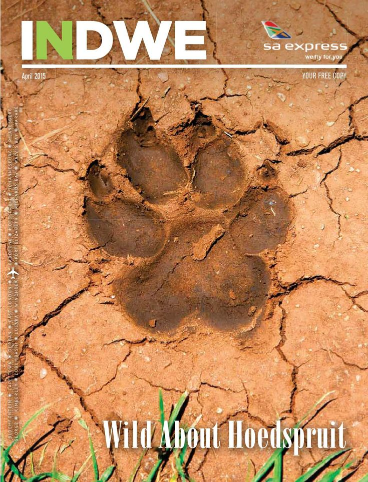 Indwe April 2015  In this issue:  Hoedspruit's Safari Gems Countryside Hospitality Old Four Legs 2015's Biggest Wellbeing Trends