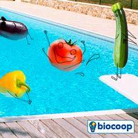 Les légumes d'été à savourer en Août