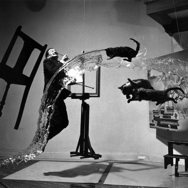 """A obra """"Dali Atomicus"""", de 1948, explora a ideia de suspensão, que expõe três gatos, água jogada de um balde, um cavalete, um banquinho e Salvador Dalí,"""