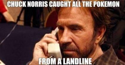 Chuck Norris's starter pokemon was MissingNo.
