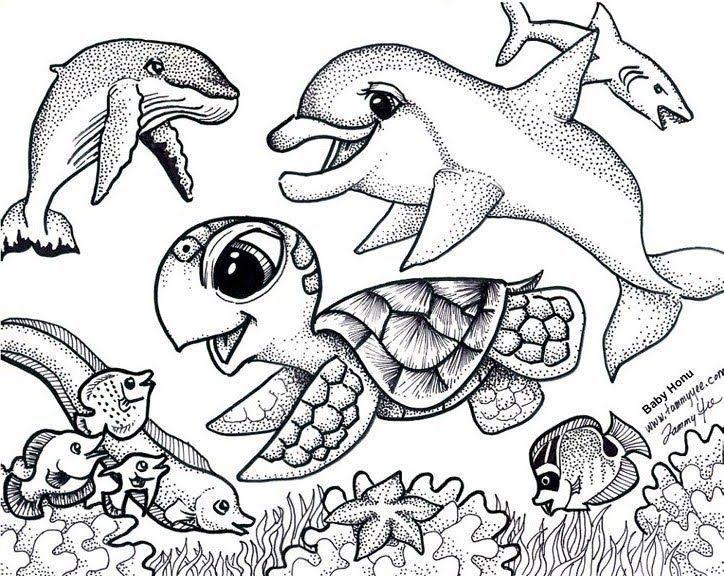 Морские обитатели черно белые картинки