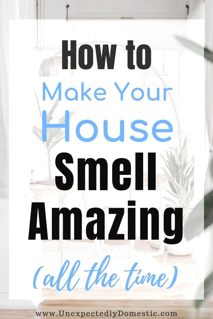 We share the 18 different parts of the house you need to tackle for a thorough a…