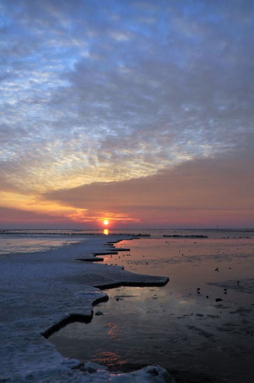 #Netherlands #Terschelling #The Wadden Sea - The Netherlands & Germany