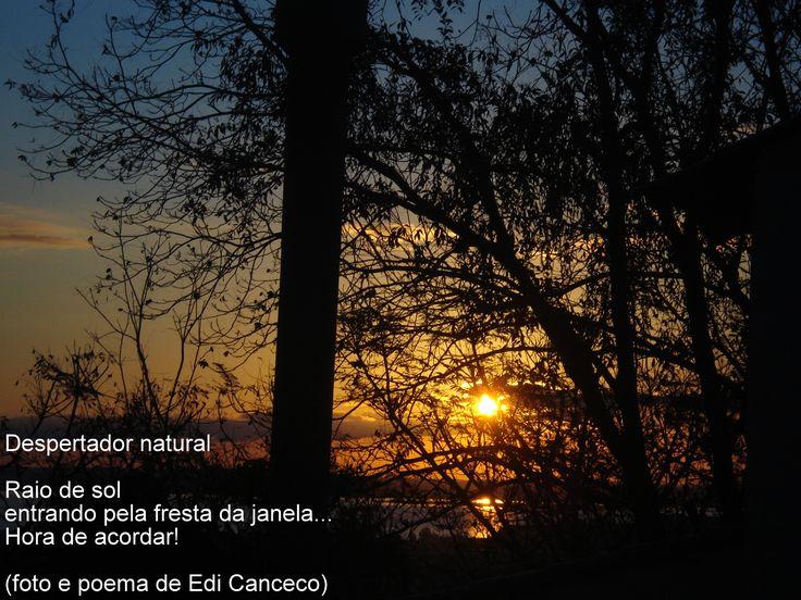 poema Despertador natural