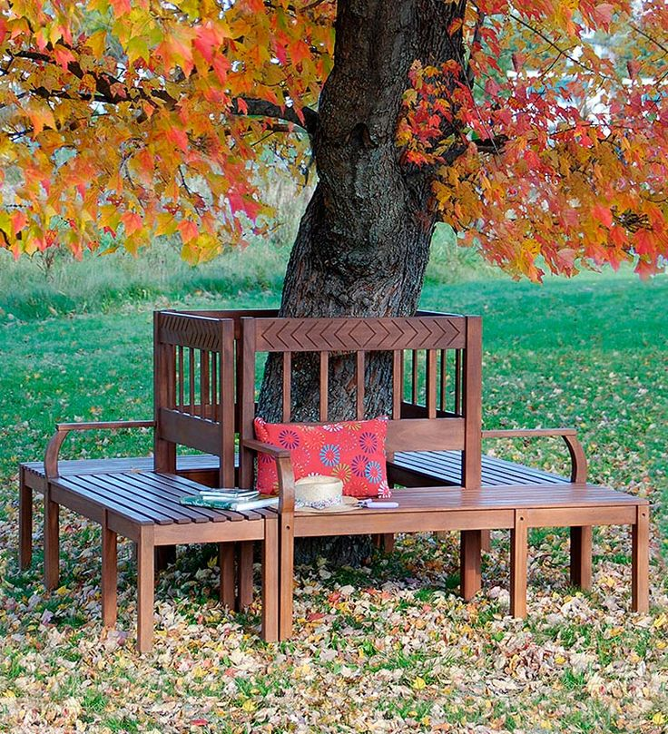 Eucalyptus Outdoor Oxford Tree Bench - made from sustainably harvested,  naturally weather-resistant eucalyptus