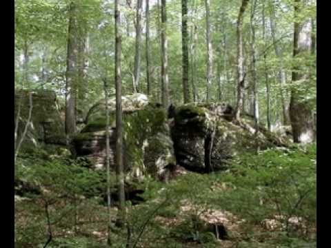 Bergendy - Jöjj Vissza Vándor