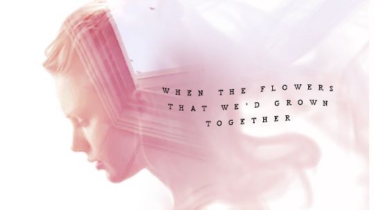 The flowers that we'd grown...