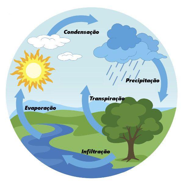 Ciclo Da Agua Brasil Escola Em 2020 Ciclo Da Agua Ciclo Hidrologico Livro De Portugues