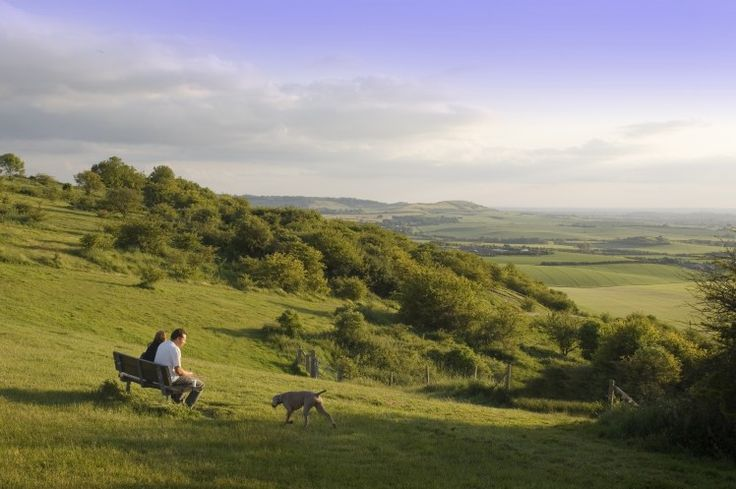 View across the Dunstable Downs in Bedfordshire, Dunstable Downs, Bedfordshire, England.