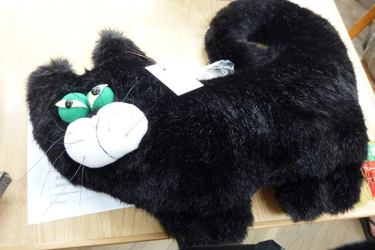 my first plushy toy called manfred!