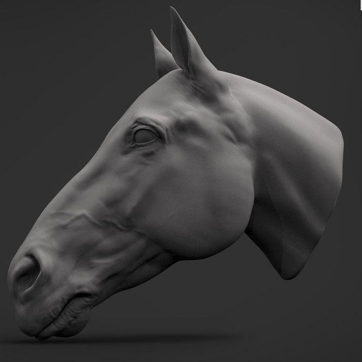Horse's head. by Ran Manolov on ArtStation.
