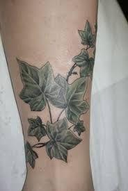 Bildergebnis für efeu tattoo