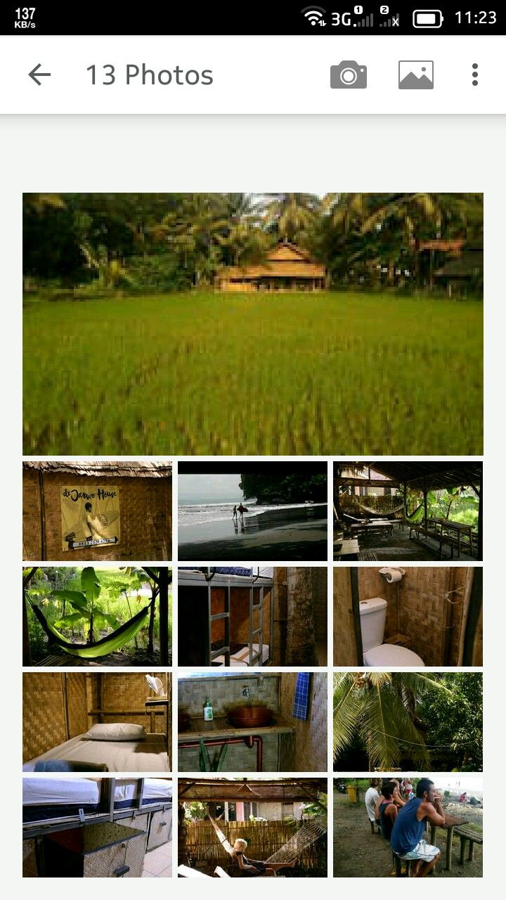 d'Jarwo House is under shady trees and overlooking a paddy field