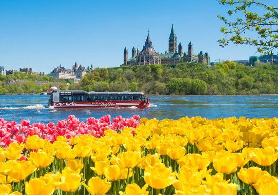 Festival canadien des tulipes