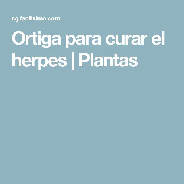 Ortiga para curar el herpes | Plantas