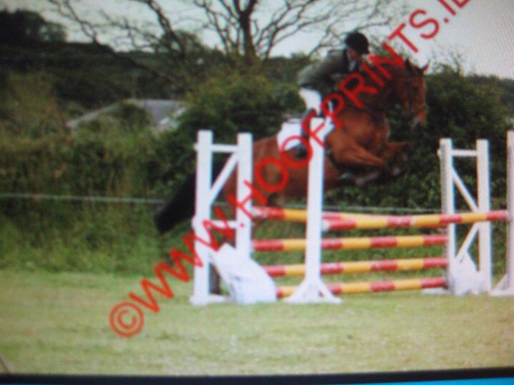 Nothing Better B,sold through Richard Sheane to America. Now eventing at 1* level.