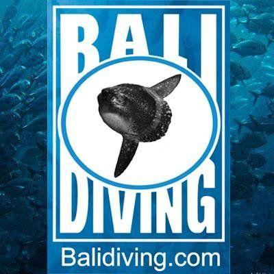 Bali diving logo #Balidiving