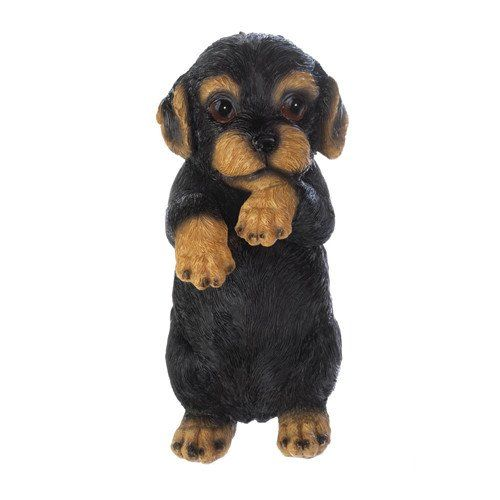 """Climbing Cutie Dotson Puppy: This curious little doggy wants to check out what's going on with your favorite potted plant or on the other side of your garden wall. His adorable face is the perfect way to hang some charm inside or outside. 3-5/8"""" x 2-1/2"""" x 6-3/8"""" high. Polyresin. #weinerdog #dogs #dogdecor #dotsonpuppy"""