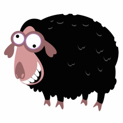 black sheep funnies | Funny Black Sheep Photo Cut Out at Zazzle.ca