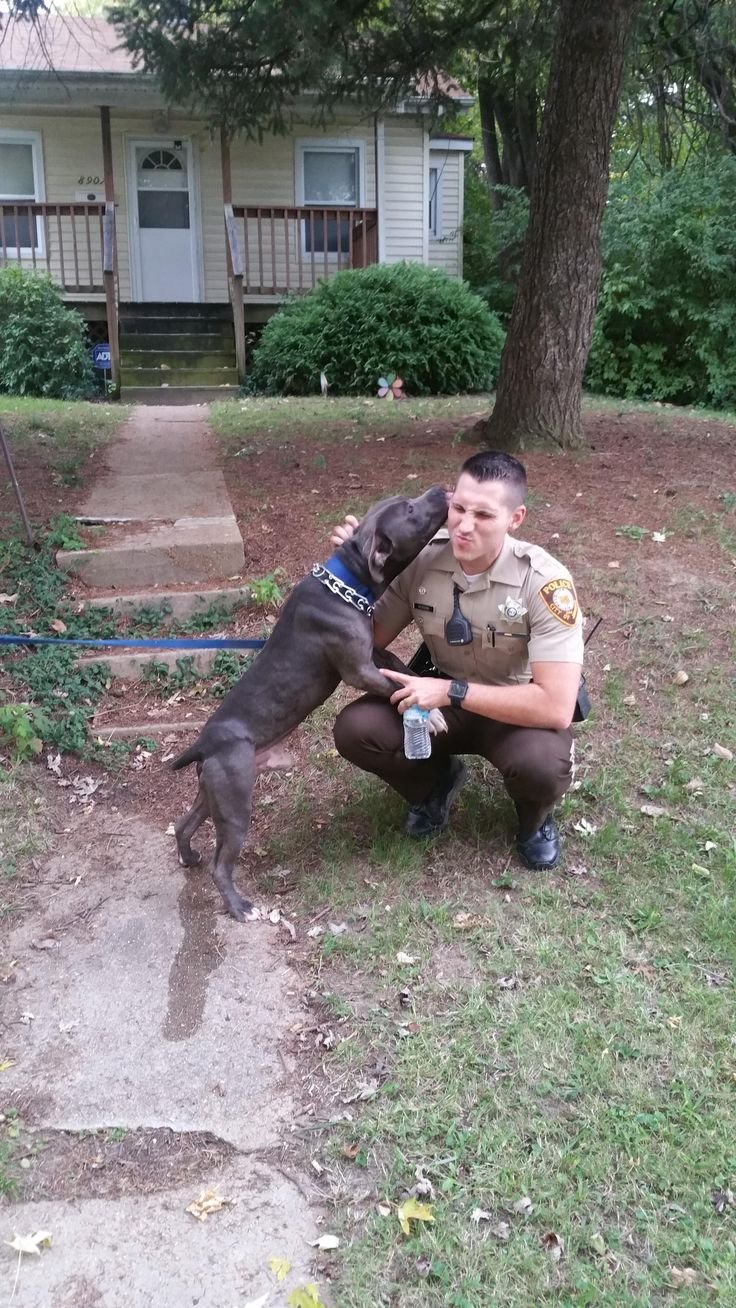 Vicious Pitbull Attack http://ift.tt/2lwV9ug cute puppies cats animals