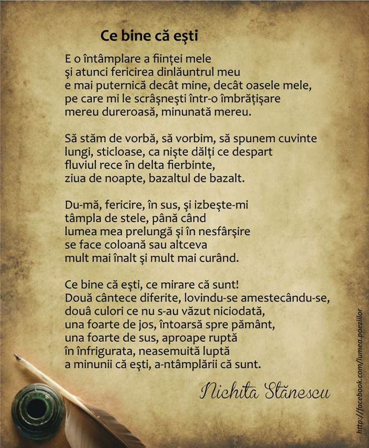 Ce bine ca esti - Nichita Stanescu