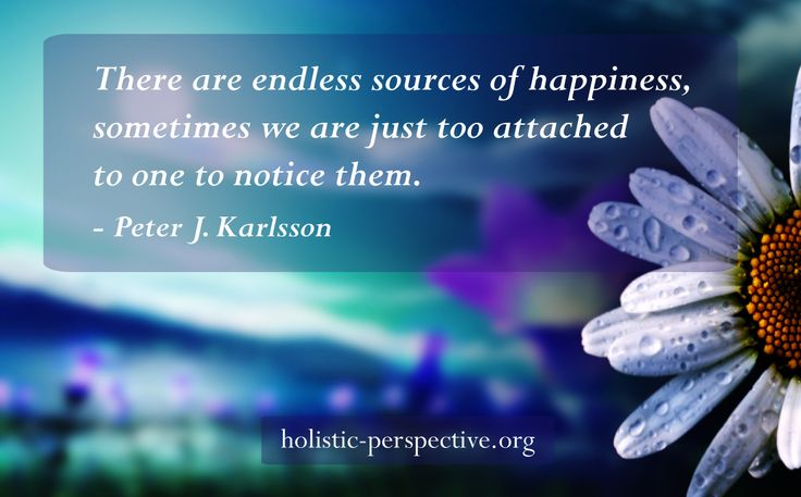 Theory of Holistic Perspective | Endless sources of happiness