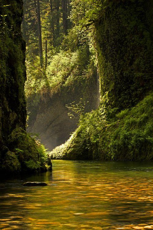 194 best rivers creeks  u0026 waterfalls images on pinterest