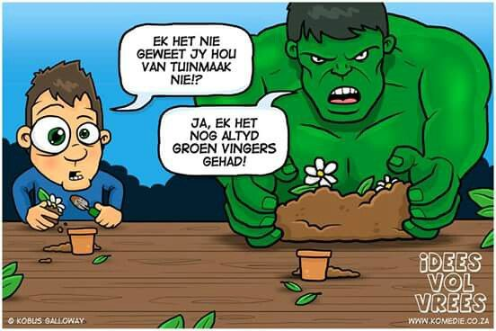 #hulk #funny #afrikaans #ivv #idees_vol_vrees #snaaks #grappe #puns