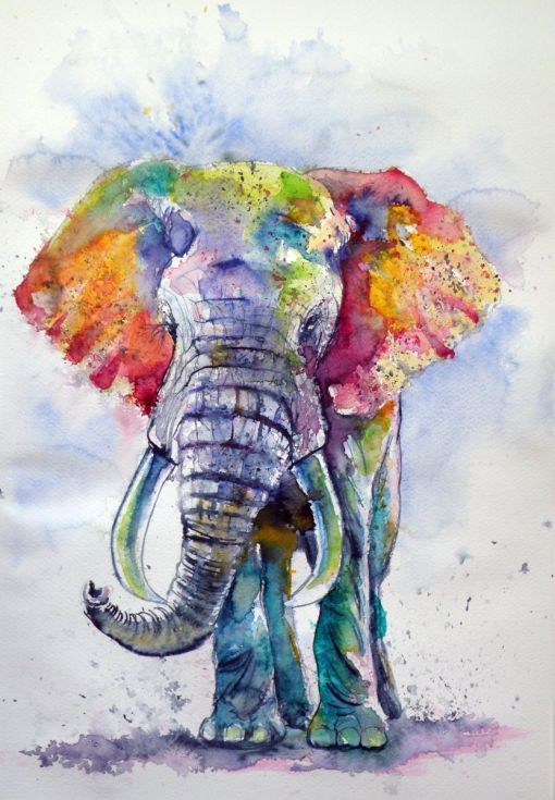 Artfinder Colorful Elephant By Kov 225 Cs Anna Brigitta Original Watercolour Painting On High