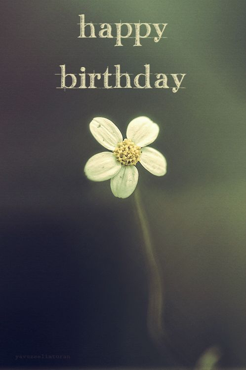 Happy birthday.  Click on this image to see the biggest selection of birthday wishes on the net!