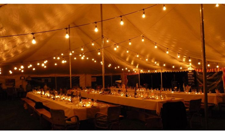 Mr Ralph - Strings and Bunting, Beautiful Vintage Globe string Lights