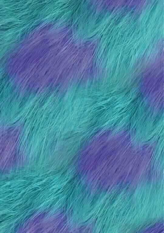 Sully's Fur Wallpaper