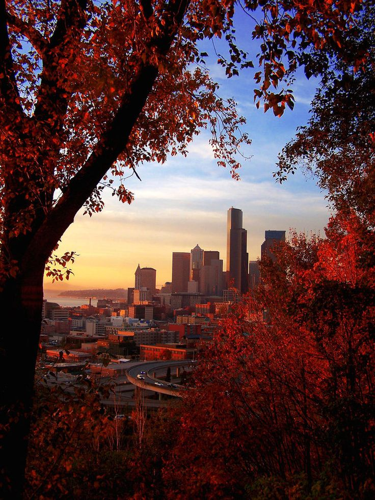 *Seattle, Washington I really like the framing aspect of this photo! It really draws in the eye! Plus with the foliage being on a diagonal, it ads more dynamism than a straight frame would! well done! http://OnTargetPhotoTraining.com