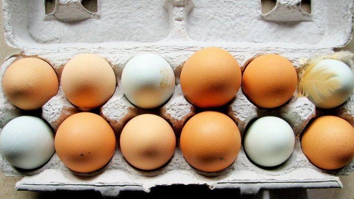 Λύθηκε το μυστήριο για την διαφορά καφέ και άσπρων αυγών