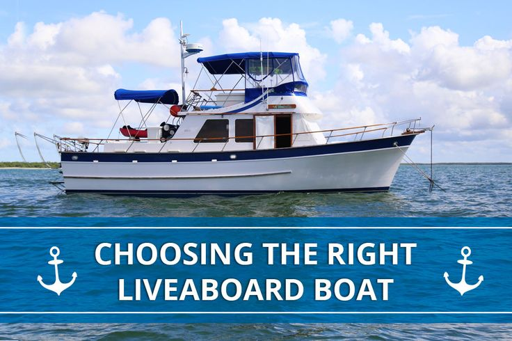 Choosing the right liveaboard boat can be overwhelming. Here we discuss why we…