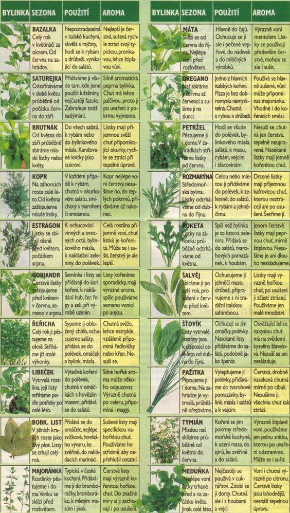 Bylinky - neměly by n našem jídelníčku chybět. Většina z nás má překyselený organismus a to stojí za řadou civilizačních nemocí. Zelená strava působí nejvíce alkalicky, takže zařazení do jídelníčku čerstvého drinku přispěje našemu organismu k normalizaci Ph. Pro koho je výroba nápoje náročná, pak doporučujeme Sevenpoint2 Greens - http://saksa.sevenpoint2.com/products.html?country=cz&language=cs: