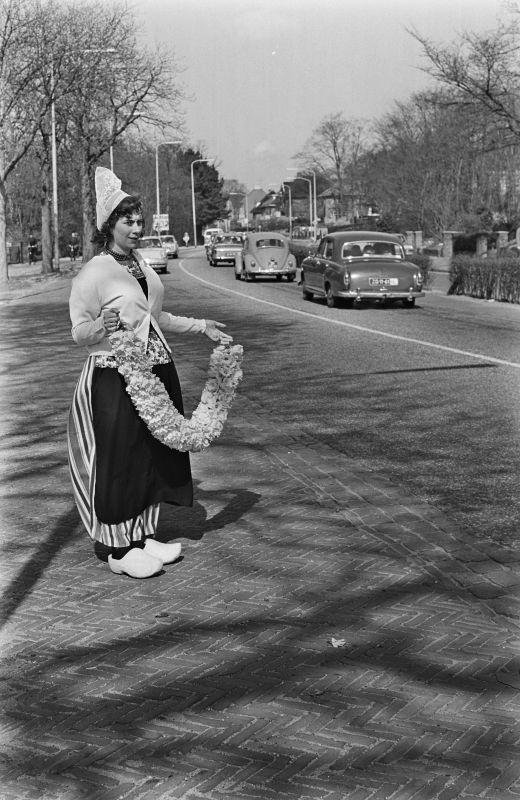 HET BOLLENSEIZOEN IS BEGONNEN: EEN DUIDELIJK BEWIJS HIERVOOR ZAG ONZE FOTOGRAAF BIJ LISSE, ZONDAGMIDDAG. 1965 #NoordHolland #Volendam