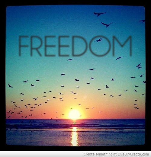 freedom - Google Search