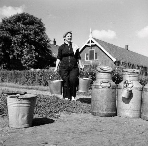 Boerin giet na het melken de melk over in een melkbus. 1950-1970].