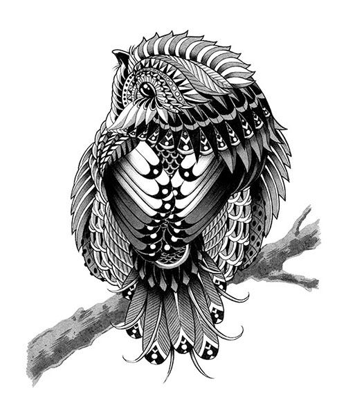 Chickadee Ornate Collection 2012-2013 on Behance