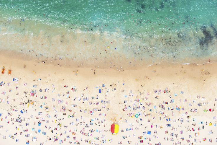 Gray Malin | Coogee Beach