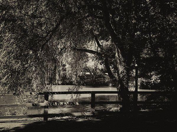 Atmospheric landscape photographyblack and white landscape shot on iphone monotone monochromatic